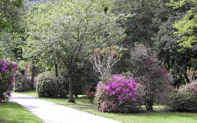 Campingplatz Valle Romantica Cannobio Lago Maggiore